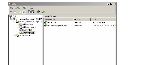 DHCP_Option_43
